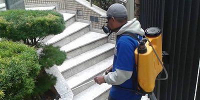 Dedetização de Condomínios em Franco da Rocha (11) 3923-3653